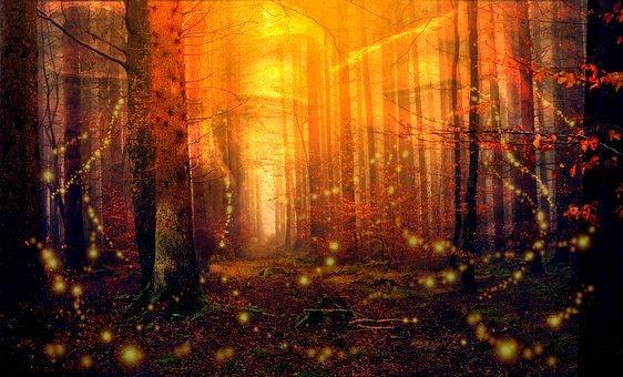 Virtual Reading & Energetic Healing (20)