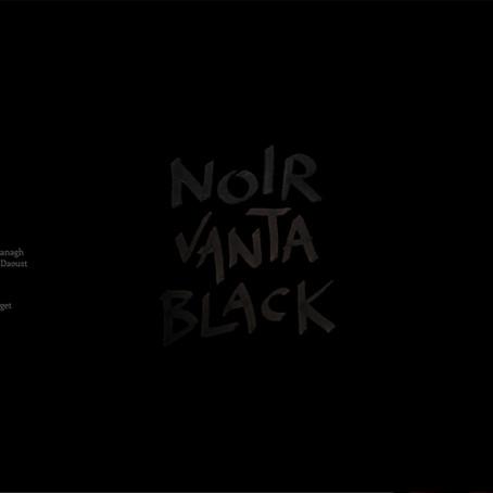 Vanta Black – a World Without Color