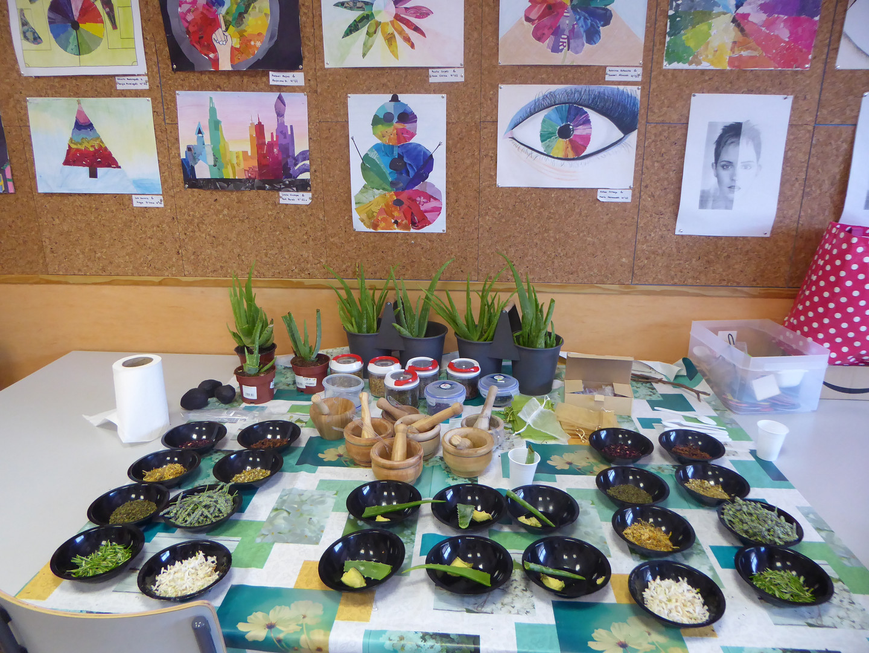 Botanical workshop