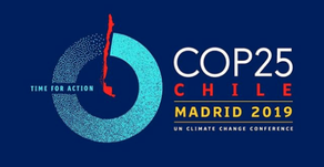 FLASHBACK: BRINGING EXAMPLES OF NATURE BASED SOLUTIONS IN SPAIN AT COP 25