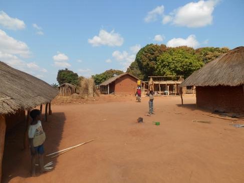 Studied villages