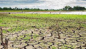 Dry-cracked-land.jpg