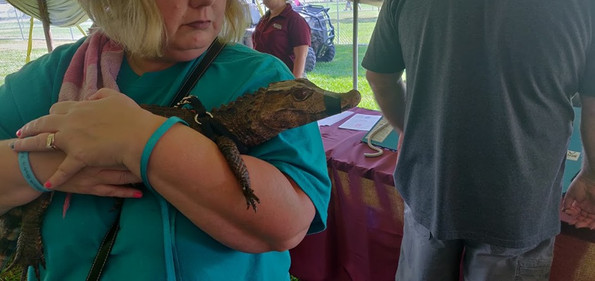 One of These Things is Not Like the Others - A Cayman at Texas GATORFEST (Photo by Pete Hess)