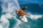 surf guding in Tamraght, Wave & Dance Morocco