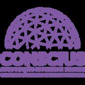 Logo Consicius