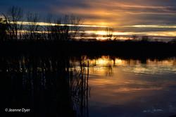 Sunset Horizontal-9049