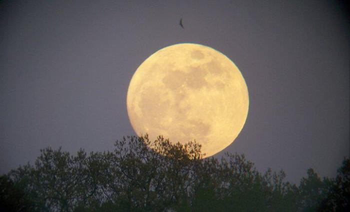 Fontana Moon Rise