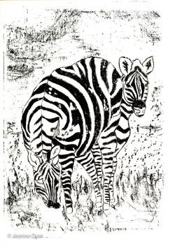 Zebras on the Veld-0181