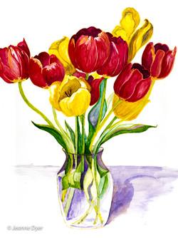 Tulips in Vase-0154