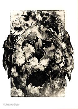 King of the Veld-0178