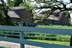 Barns on Bloomfield Road-7100