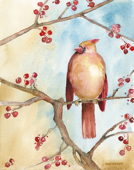 Female Cardinal in the Winterberry