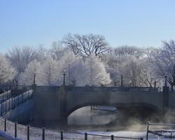 Geneva Frosty