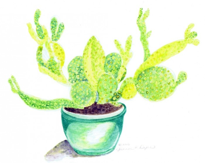 Sodona Cactus