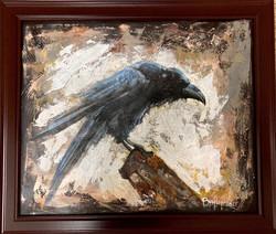 """Robust Raven"""
