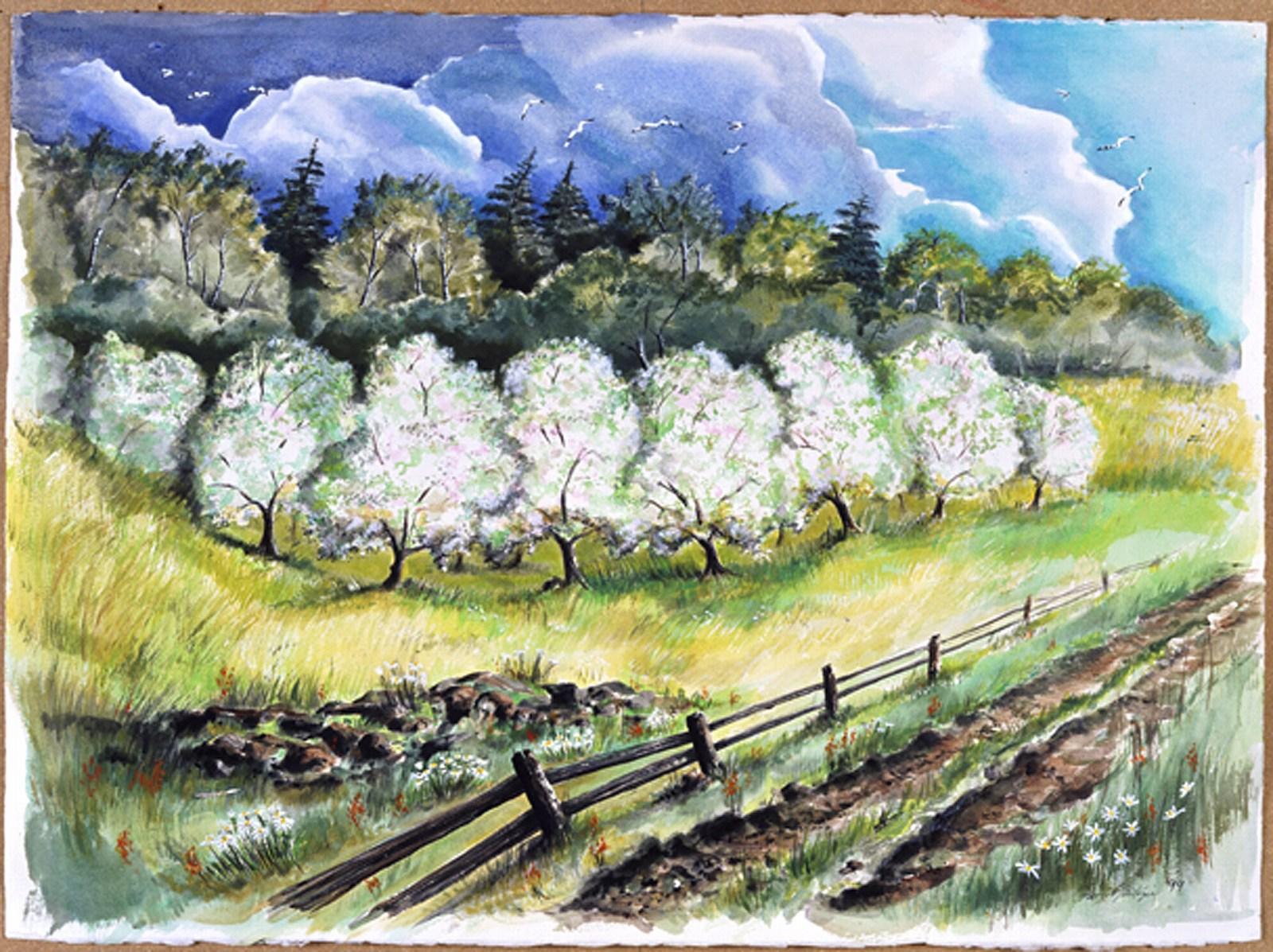 Door County Orchard