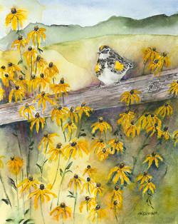 Bird on Fence