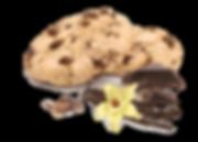 Сладиал Sladial печенье Модемуазель шоко купить печенье с бельгийским шоколадом печенье от производителя
