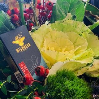 Wildseed Packaging