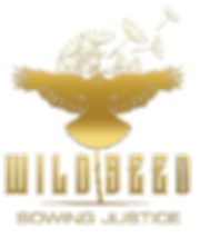 wildseed_logo_full.png