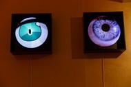Hologram eyes 60x60x30cm each