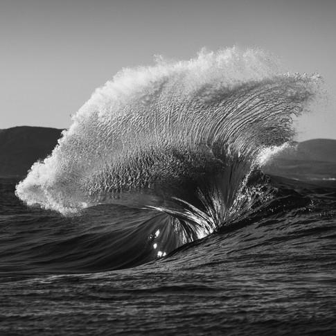 Nick White Photo (45)