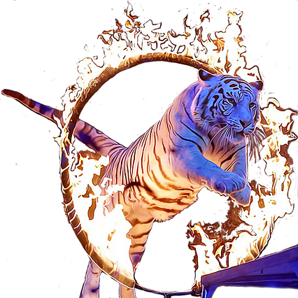 tigre%20d%C3%A9coup%C3%A9oil_edited.png