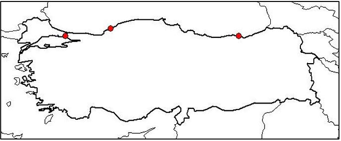 2. dosya figür17.PNG