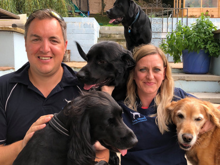 Harris Hounds Awarded Full Star Rating for New  Boarding Facility