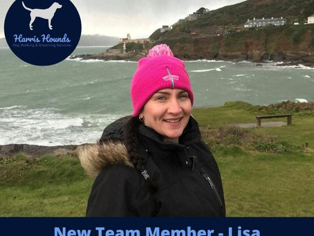 Harris Hounds new Team Member Lisa - But who is she??