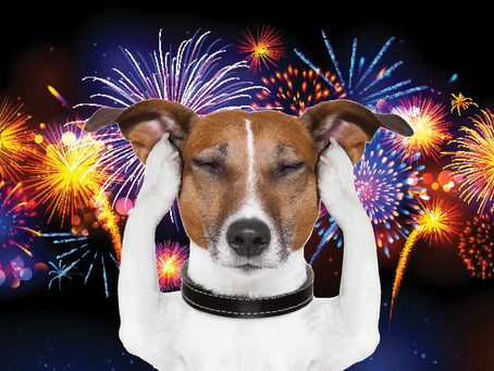 Harris Hounds guide to Fireworks!