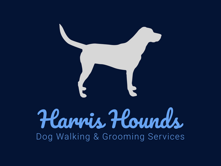 Plymouth Dog Walking Business Launches Eco-Friendly and Vegan Spa and Grooming Experience