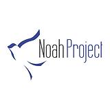 noah project.png