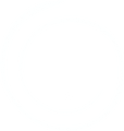 Belly Only Logo.png
