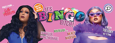 Bingo-Bitch-Night---Page-Header.jpg