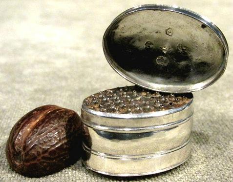 A Fine & Rare George III Silver Nutmeg Grater by Samuel Pemberton