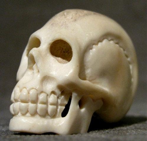 A Carved Bone Miniature 'Memento Mori' Model of a Human Skull