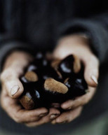 811cb280e328b247eb649a7043520267--roasted-chestnuts-brussels-sprout.jpg