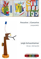 Leigh Schoenheimer catalogue essay Perceive Conceive expanded Stanthorpe Regional Gallery Solo Exhibition