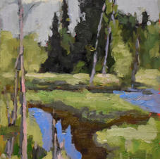 runoff beaver dam saint faustin