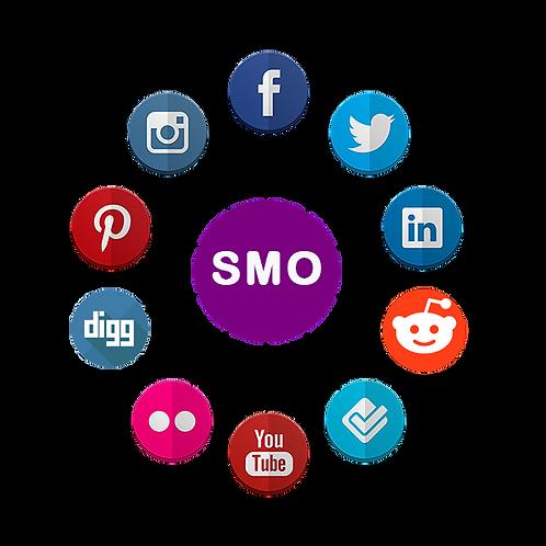 Search Media Optimization(SMO)