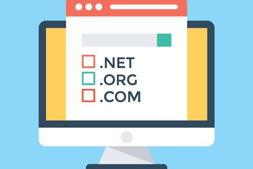 Domain Provider