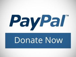 Donate to advance our work
