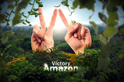 VICTORY AMAZON