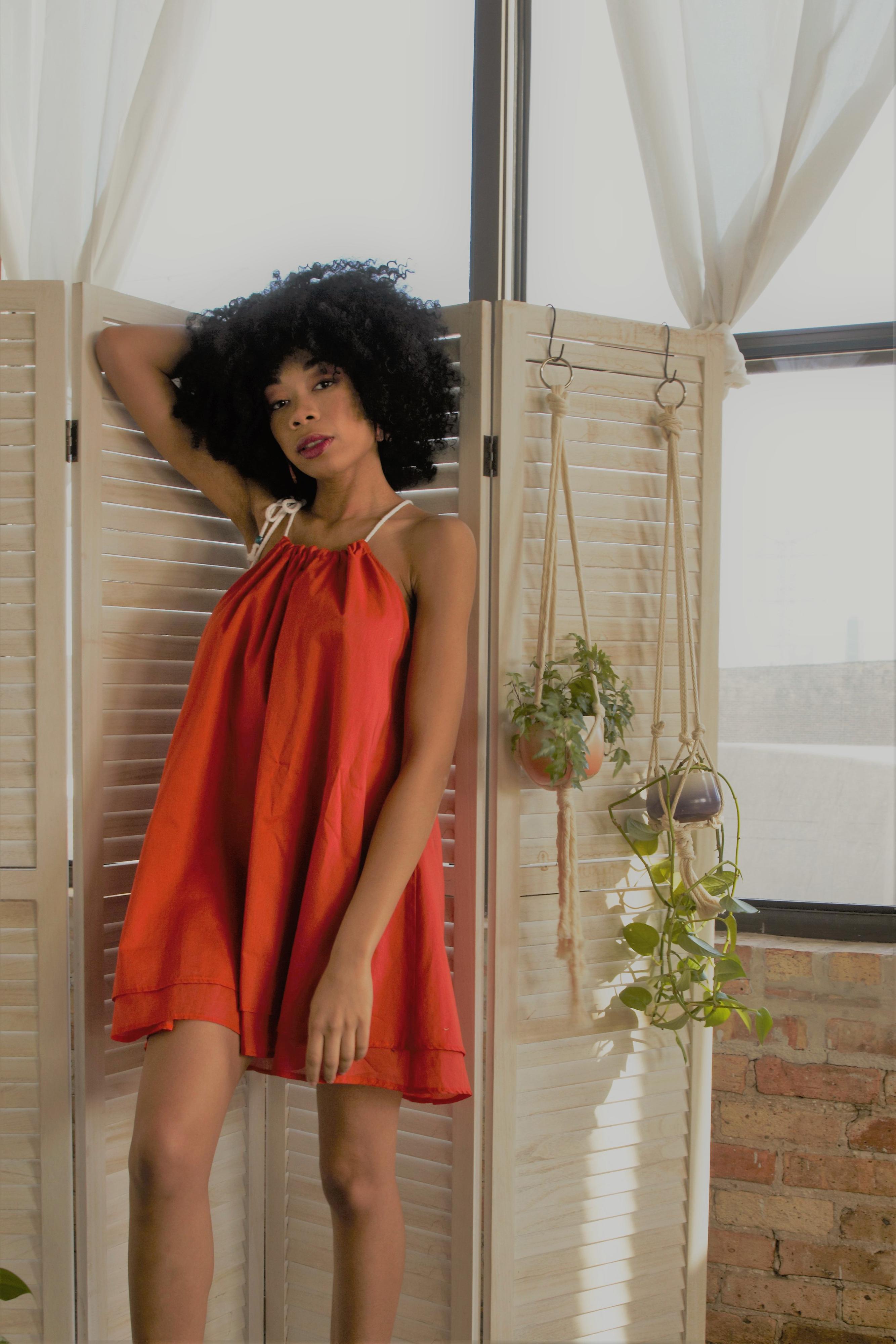 Michele Dress