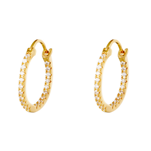 OORBELLEN SHINY HOOPS