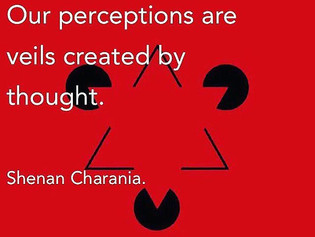 Our Perception is a Veil.