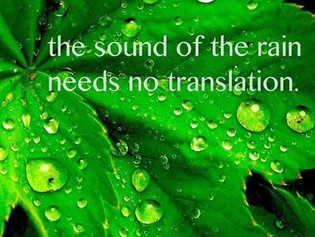 Listen To The Source.