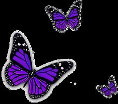 31675-2-purple-butterfly-transparent-ima
