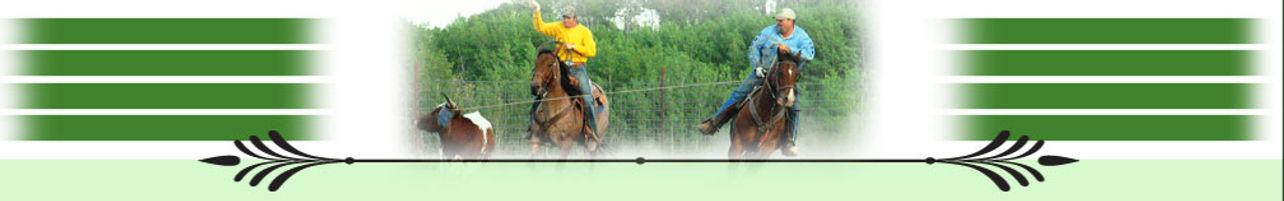 page_photo_horses.jpg
